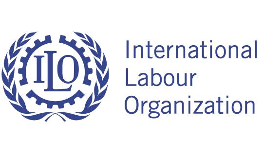 Patrizia Del Ninno President of Ciscos in the Tripartite ILO Commission